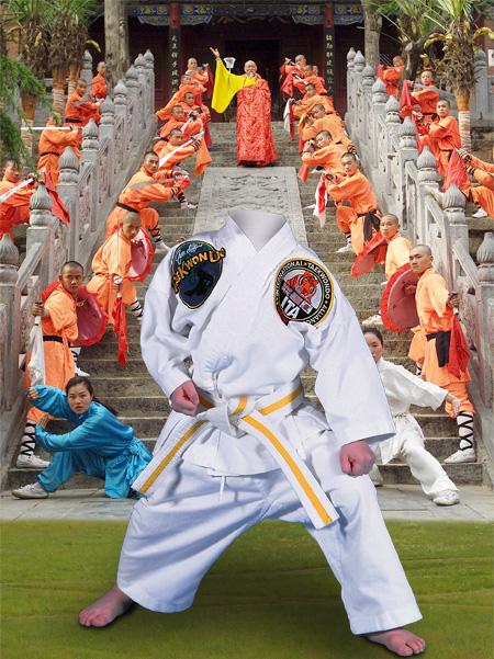 Descargar Fotomontaje Taekwondo y artes Marciales.